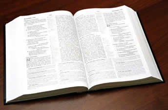 Bibles_and_literature